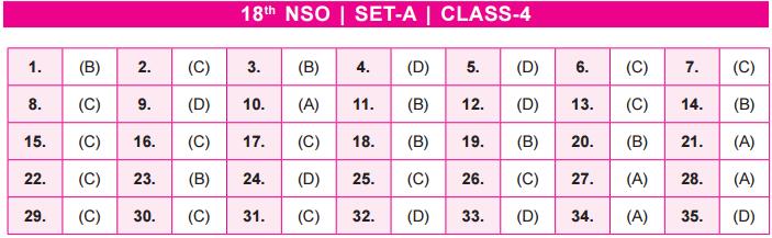 22nd NSO 2019 – 20 Set A, B Answer Key (Released) – Class 4
