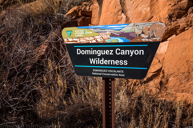 Dominguez Canyon Wilderness Sign