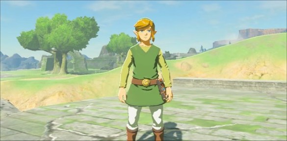 Breath of the Wild - Wind Waker Outfit