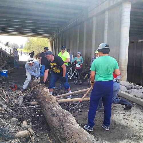Volunteers clear the Guadalupe River Trail under Montague Expressway.