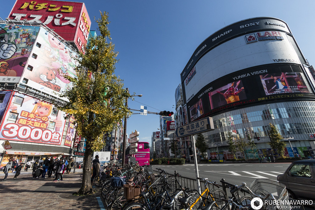 Itinerario de viaje Japón Tokio Shinjuku
