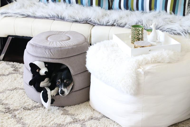 louis-living-room-sofa-carpet-pet-bed-3