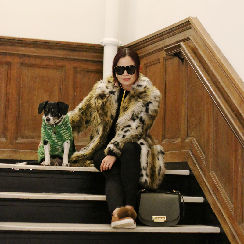 beagle-dog-leopard-coat-pom-pom-sneakers-karen-walker-sunglasses-6