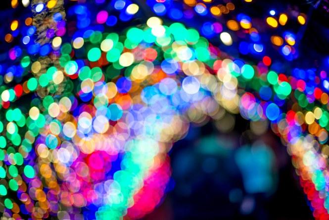 Christmas Light Tunnel