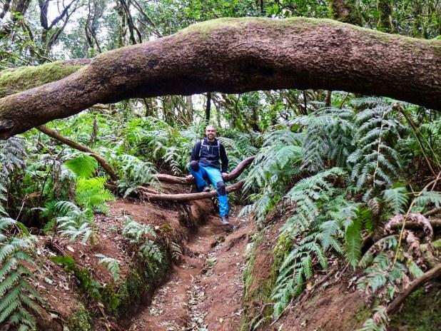 Reserva El Pijaral Tenerife