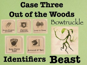 FB Cases 3