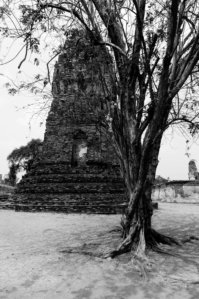 Thaïlande - Ayutthaya - 050 - Wat Maha That