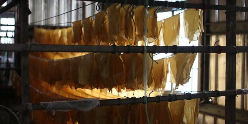 台東池上「大池豆皮店」:現煎的真的好好吃(13.6ys)