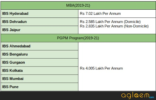 Programme Fee at IBS
