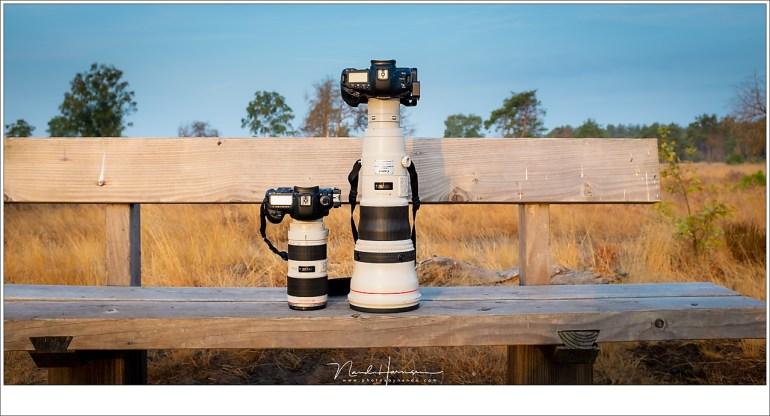 De EF800mm f/5,6L IS USM naast de EF70-200mm f/2,8L II IS USM. Zo goed als iedereen weet hoe groot de EF70-200 is, en naast elkaar brengt het in perspectief