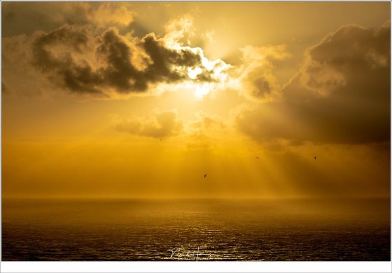 Zonsondergang vanaf Gásadalur, met de rondvliegende papagaaiduikers in de lucht. (145mm | ISO100 | f/9 | 1/2000)