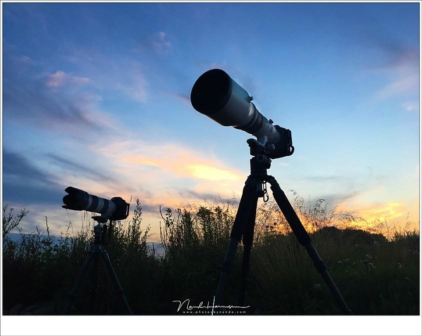 De camera's staan klaar: een EOS 5D mark IV met een EF70-200mm f/2,8, en een EOS 1Dx met een EF800mm f/5,6.