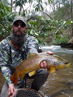 Man holding brown trout