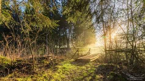 Le pont en bois