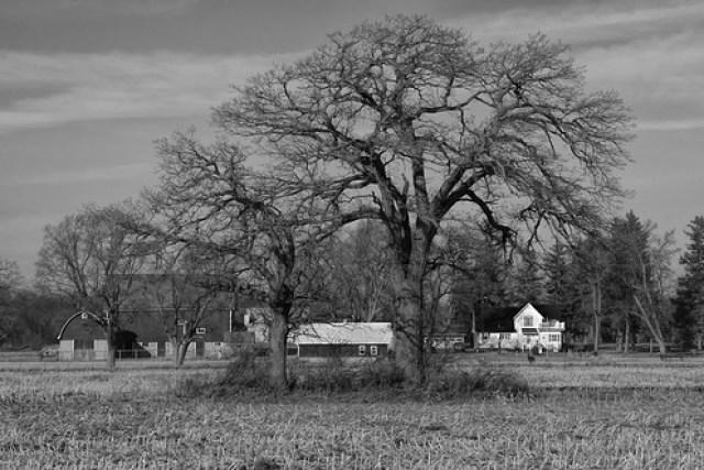 Rural Wisconsin USA 234