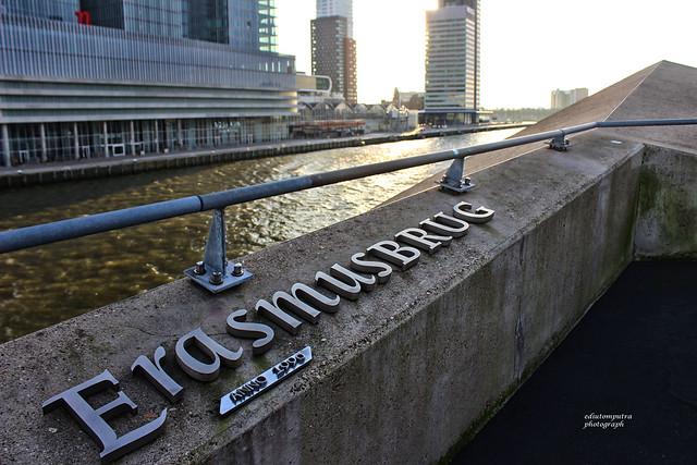Erasmusburg logo Rotterdam