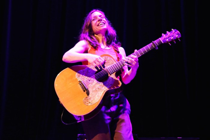 Ani DiFranco at the Park West