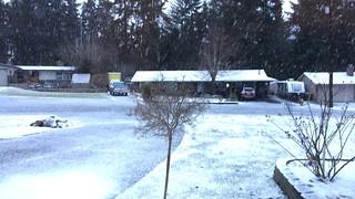 20170203-Snowfall
