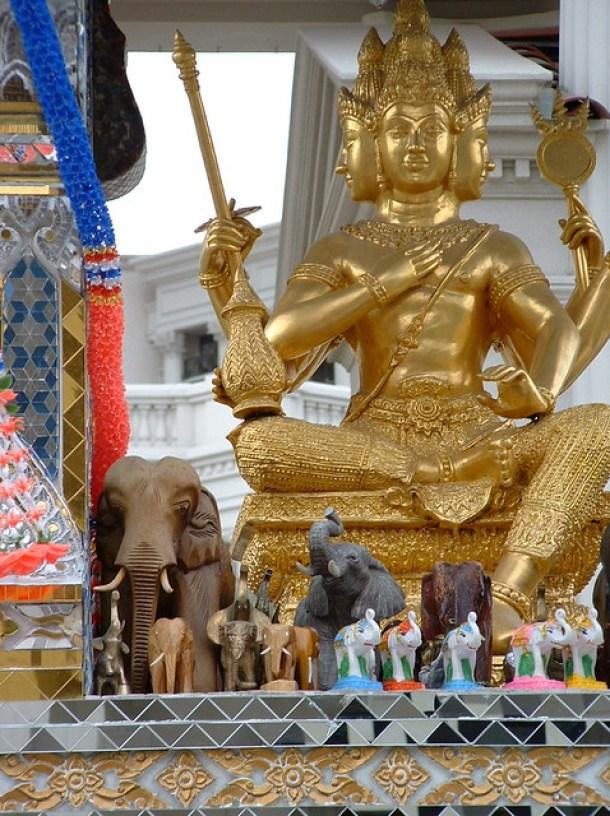 Image result for flickr images of Brahma