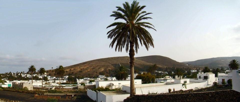 vista de Haria Lanzarote 20