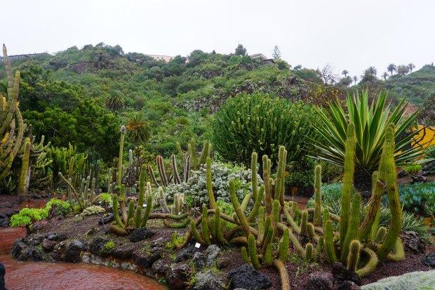 Jardín Botánico Canario