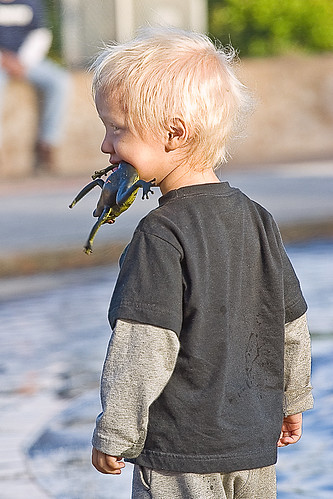 Blonde Boy Eating Frog This Little Cutie Found All Sorts