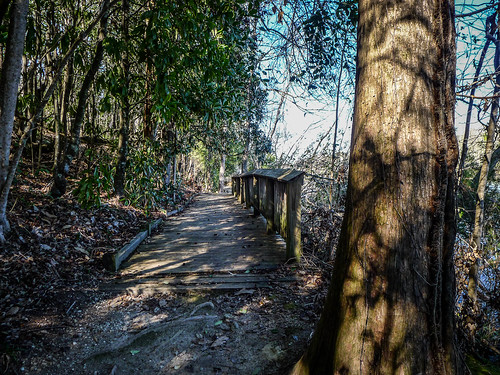 Old Santee Canal Park-89