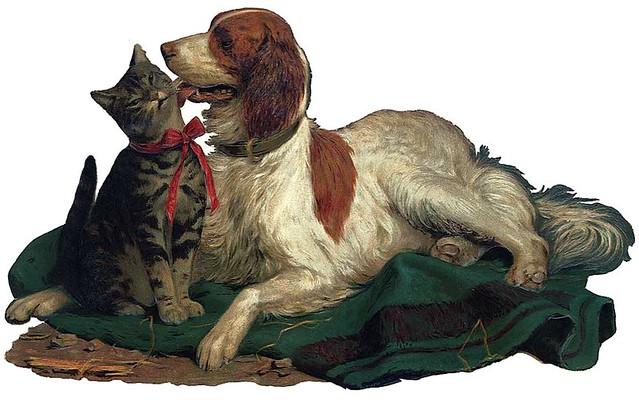 Cut Dog Cat Free By Sassy Bella Melange