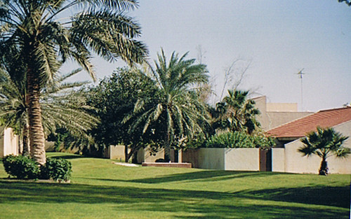 Dhahran On The Compound This Is Where We Lived My