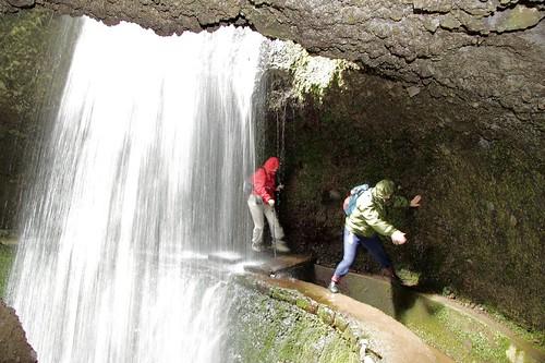 Levada Walking Madeira Levada Nova Tunnel Passing