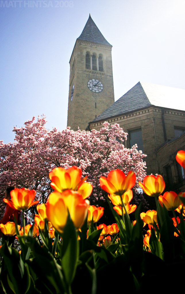 Spring Cornell A View Of Cornell University S Mcgraw