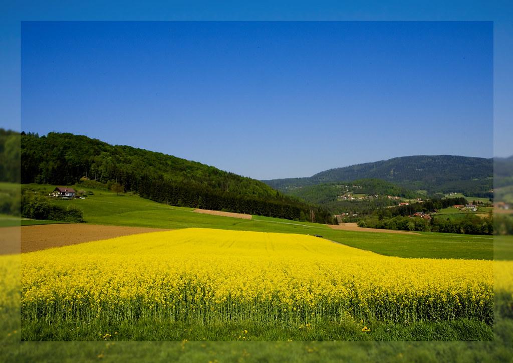 simple landscape 2 | wolfgangfoto | Flickr on Basic Landscaping  id=98723