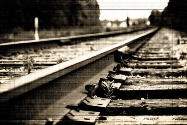 Retrospect | My life has encountered some turbulence of ...