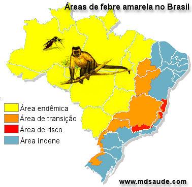 Evandro Chagas comunicou febre amarela em Rurópolis só no final da tarde, febre amarela
