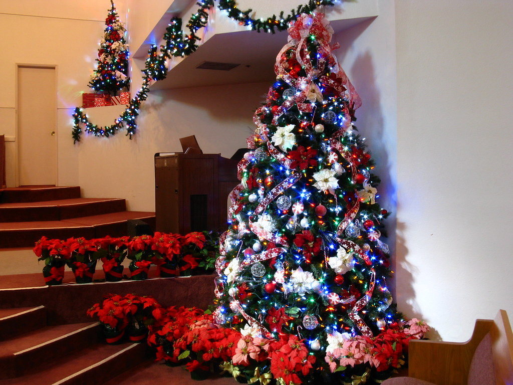 Christmas Decorations With Both LED Light Schemes