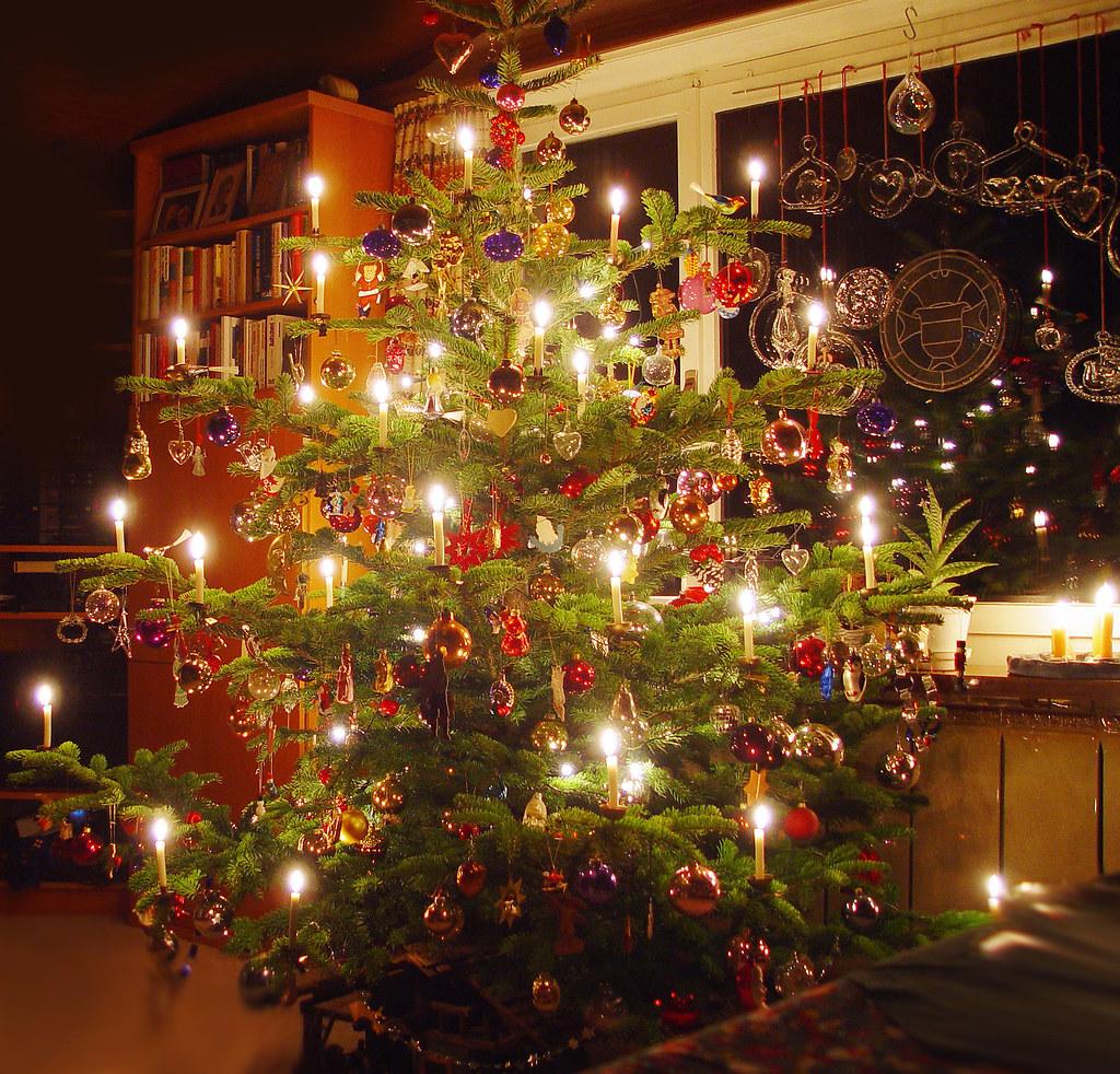 Christmas Tree Weihnachtsbaum Christbaum Tannenbaum
