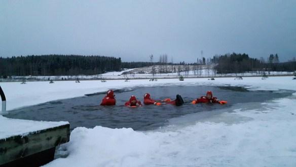 Arctic swimming