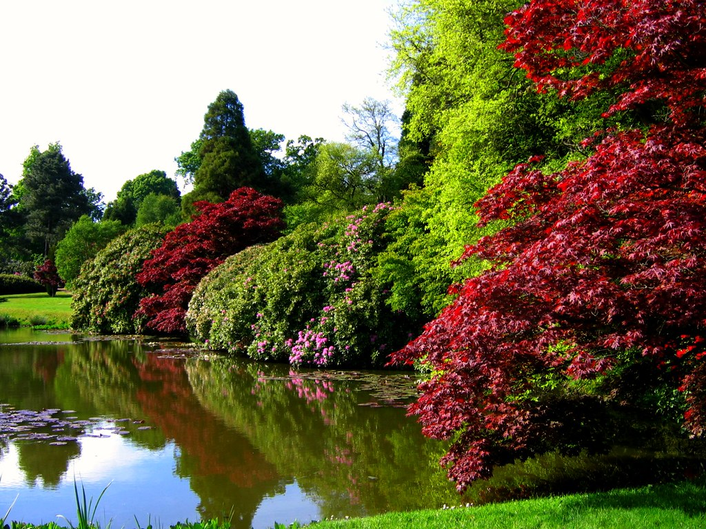 Sheffield Park A National Trust Garden In East Sussex