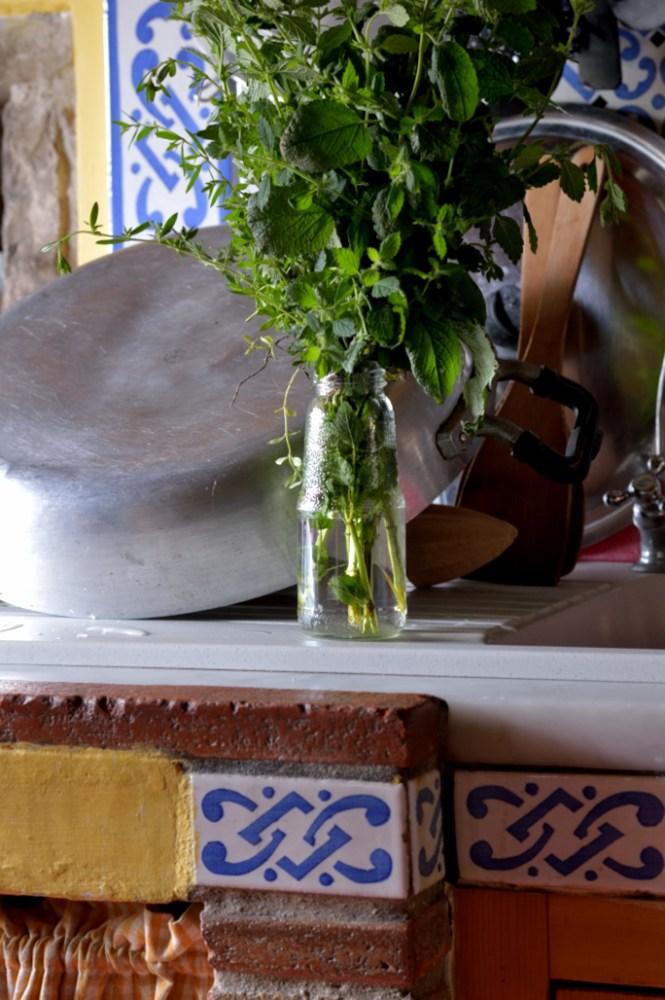 aromatiche DSC_8961 tandoori