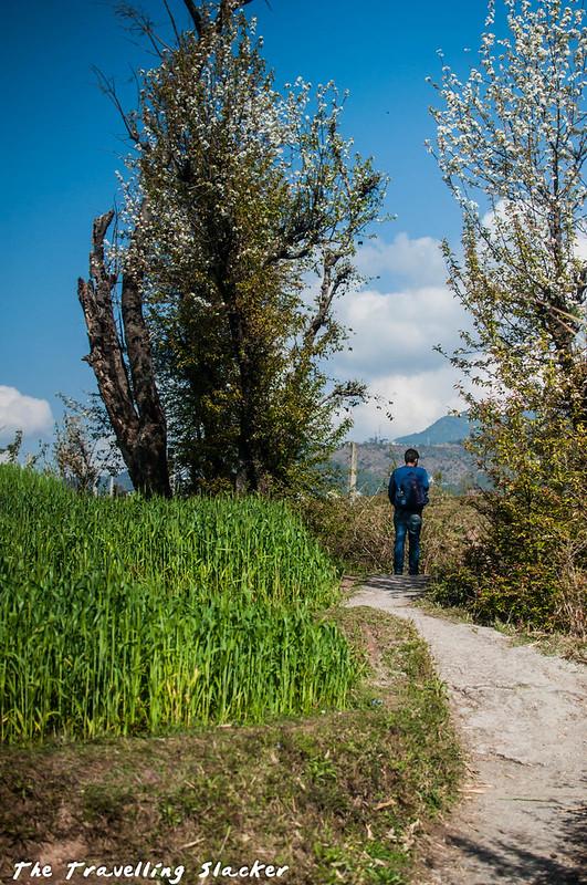 Sidhpur-Zen Valley (2)