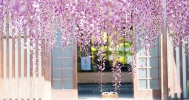 福岡自由行︱北九州市 吉祥寺.夢幻寶石般的紫藤花景
