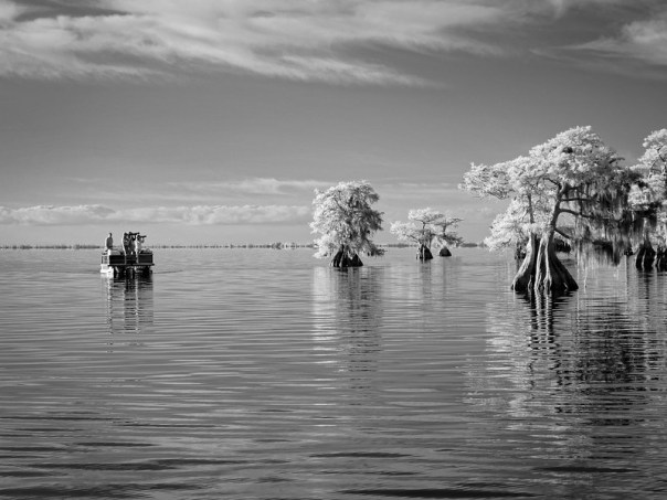 Photographing Blue Cypress Lake