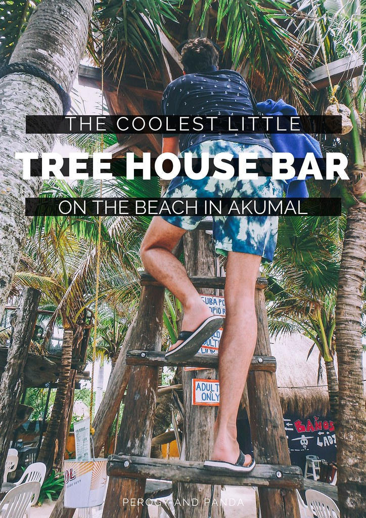 The Coolest Little Tree House Bar On The Beach In Akumal, Mexico- La Buena Vida (2)