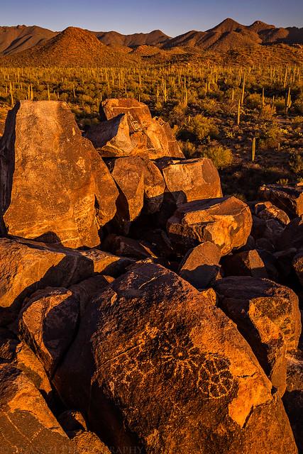 Saguaro Petroglyph Sunset