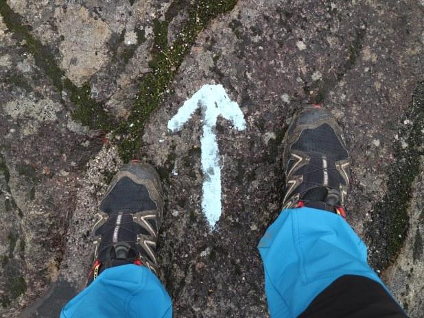 Camino en Jostedal