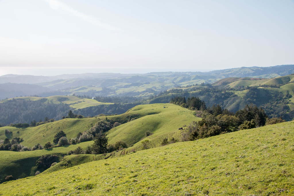 04.09. Russian Ridge: Mindego Hill