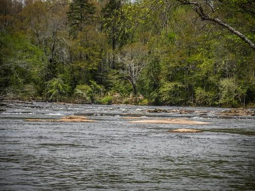 Saluda River at Pelzer-84