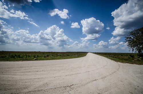 Kissimee Prairie-46