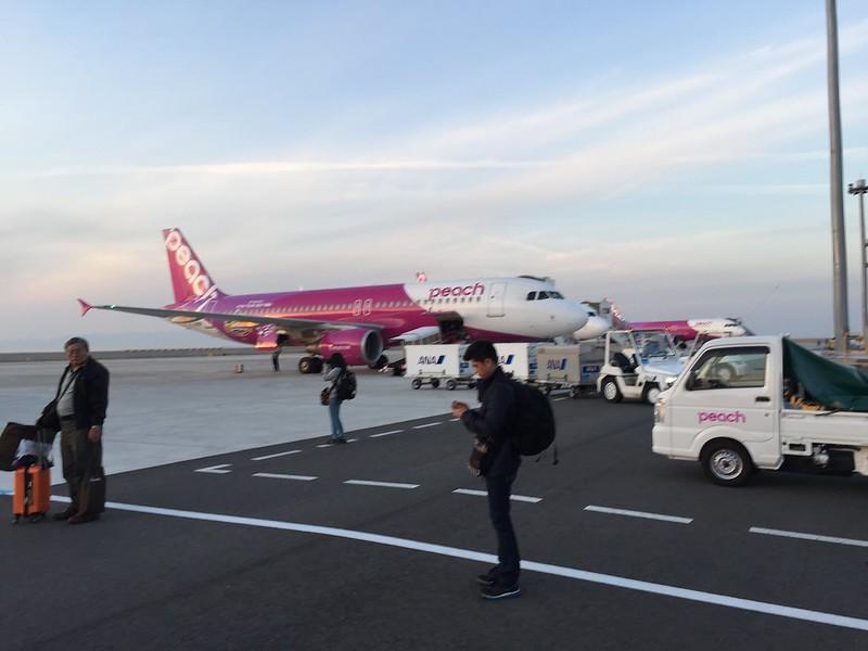 排排站的樂桃航空班機