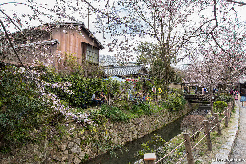 Paseo-Filosofia-Kioto-43